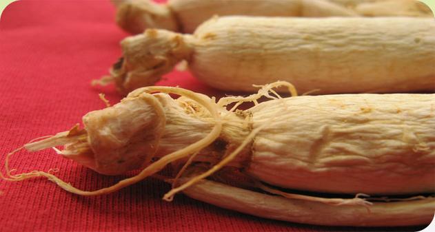 medicinal herbs wholesalers delhi, natural medicinal herbs dealers
